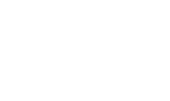 The Shoppes at the Medford Mill